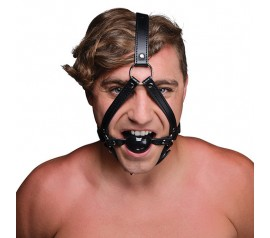Strict HEAD HARNESS